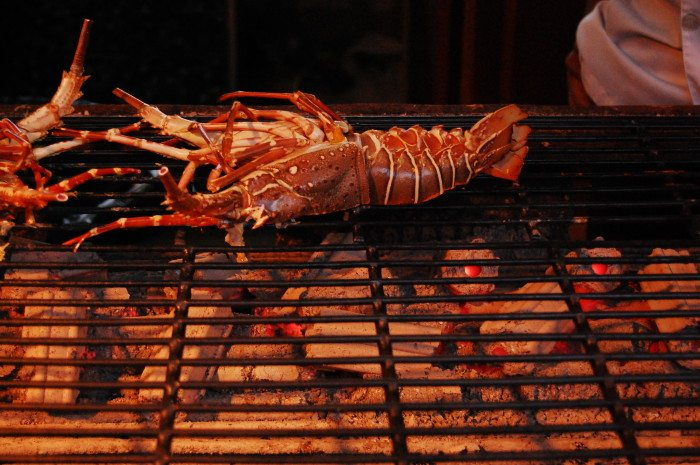 Koh Phi Phi, Thailand Lobster