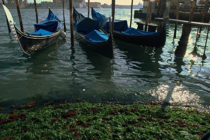 san marco waterfront