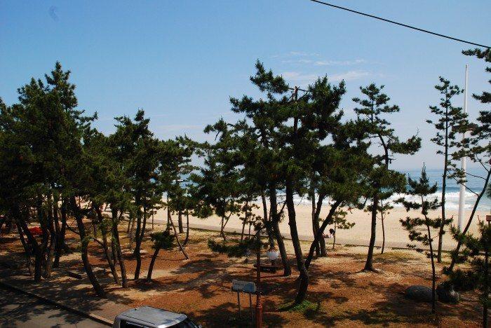 Seoul Weekend Edition: Gyeongpo Beach, Gangneung (강릉 경포해변)