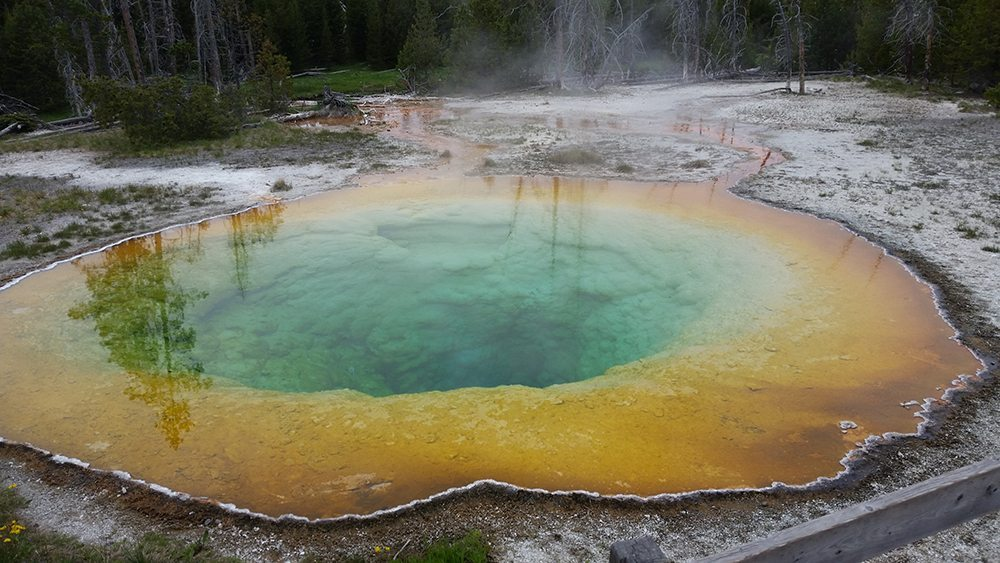 yellowstone national park morning glory geyser