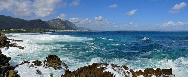 Things to Do in Hermanus: Whale Watching, Hiking & More!